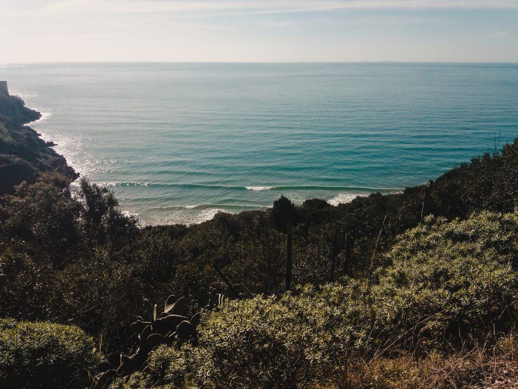 Surf in Italia - Spesso le prime uscite in line up vanno fatte in condizioni di mare regolare e con onde facilmente gestibili.
